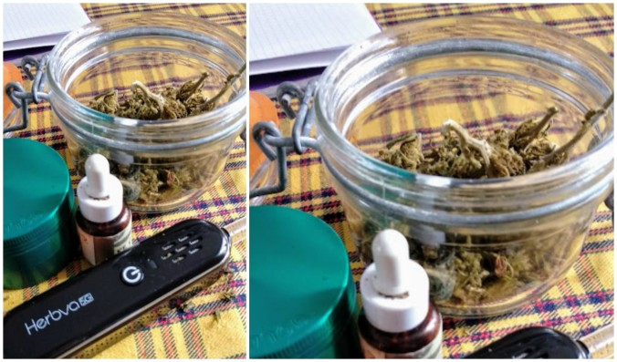cannabisc